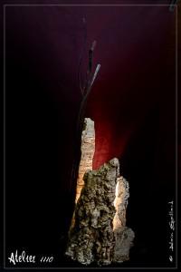 LA LIEGERETE - ATELIER 1110 - LA GACILLY