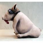 Le cochon aviateur