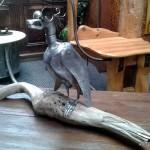 L'oiseau de métal