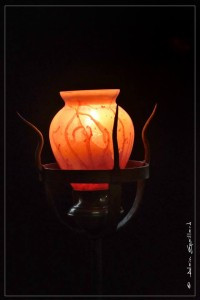 LA ROUGEOYANTE - ATELIER 1110 - La Gacilly