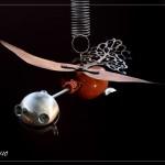 L'oiseau des Lyres