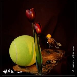 DOPE ZONE - ATELIER 1110 - La Gacilly